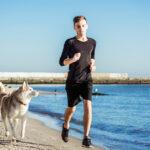 In spiaggia a settembre con il cane - Le aree pet-friendly dei lidi ravennati